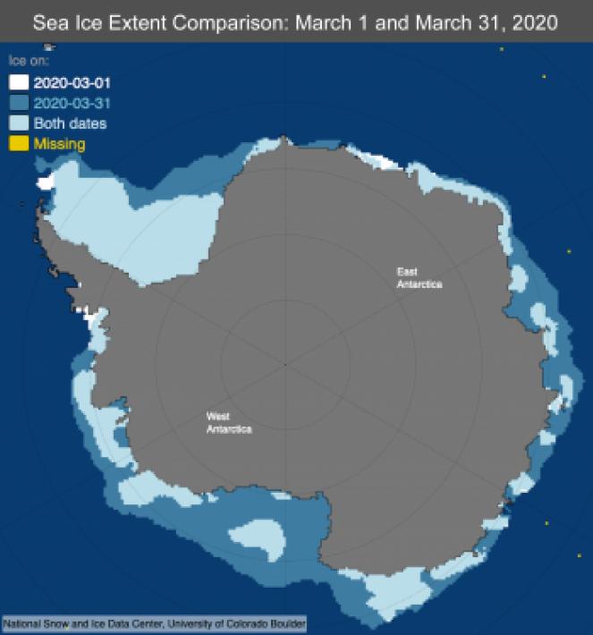 Estensione ghiaccio marino antartico a marzo 2020
