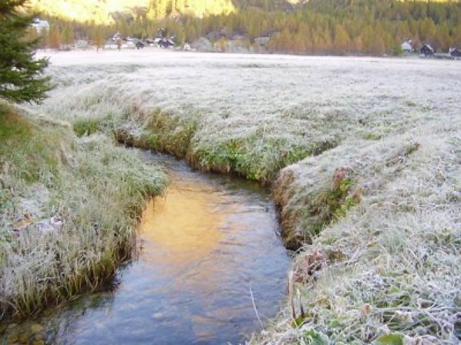 Meteo: il freddo concederà una tregua in vista del Natale?