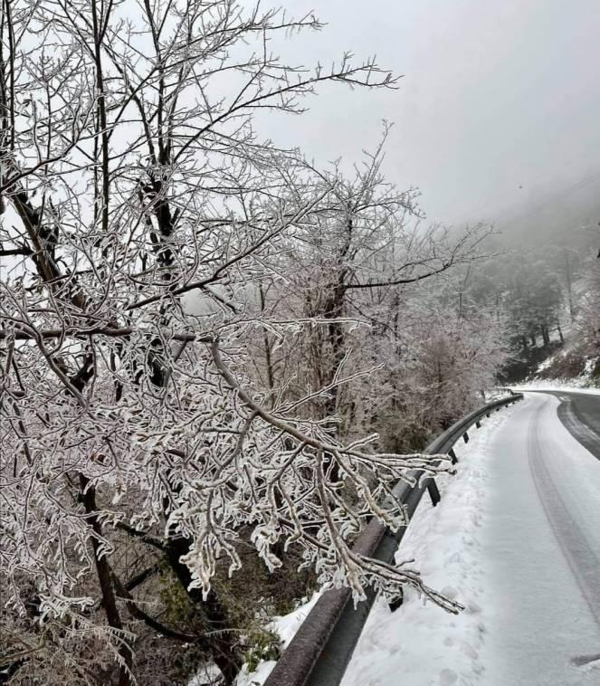 Gelicidio sul passo del Turchino, Genova, foto di Andrea Figoni