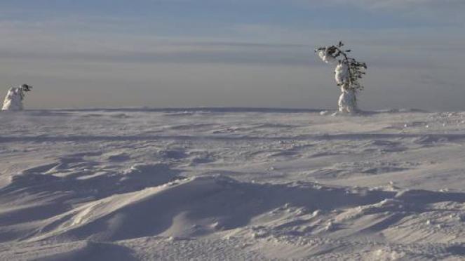 Gelo in Scandinavia in un'immagine di archivio