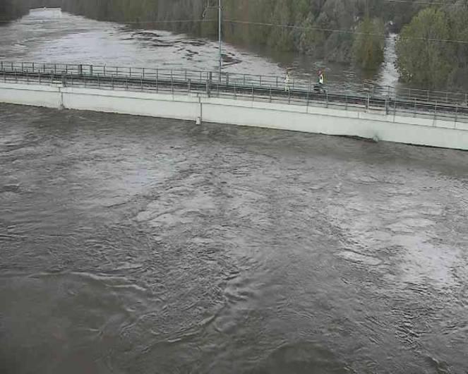 Il Piave in piena, all'altezza di Ponte di Piave. Il fiume è alto 11 metri: nel 1966 raggiunse 11.97m