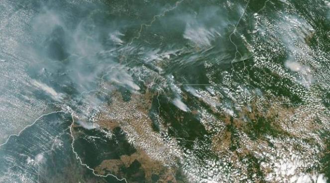 Incendi in Amazzonia (Fonte: Ansa)