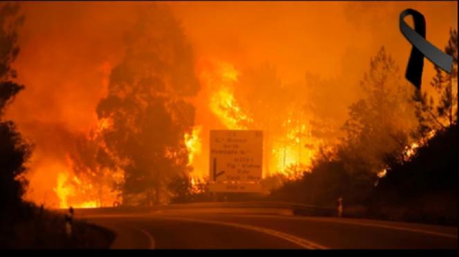 incendio in Portogallo: danni e vittime