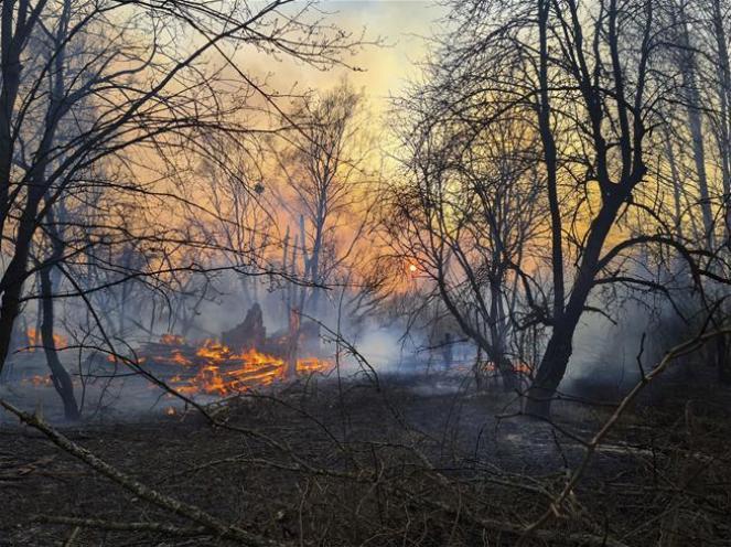 Chernobyl, radiazioni fuori norma per un incendio nella foresta intorno alla centrale