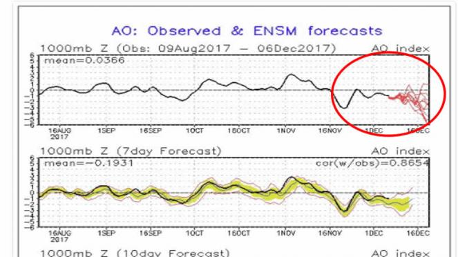 indice AO negativo, vortice polare debole