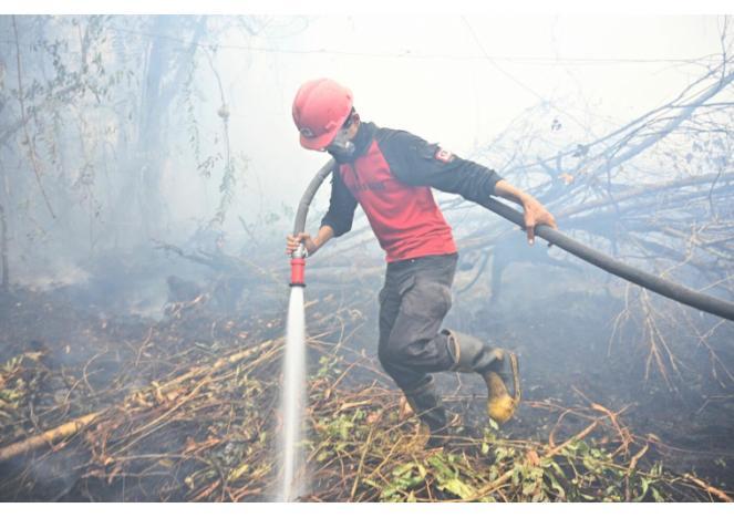 Indonesia devastata dagli incendi (Fonte immagine: AFP/La Presse)