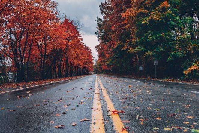 Irruzione artica imminente, arriva l'autunno su mezza Europa
