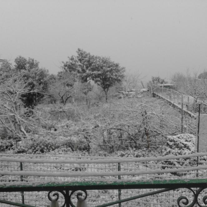 La neve a Procida, foto di Francesco Irene