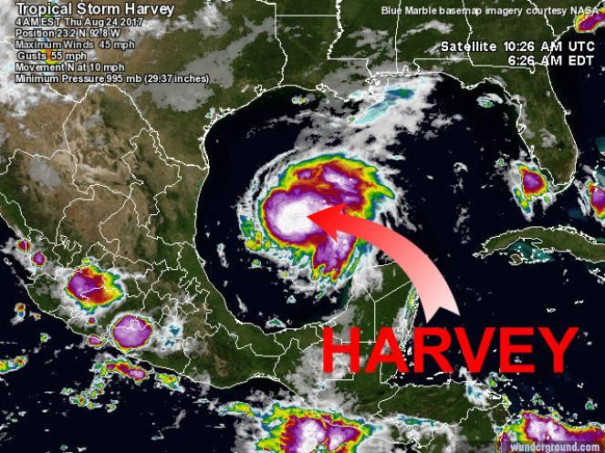 La posizione attuale della tempesta tropicale Harvey