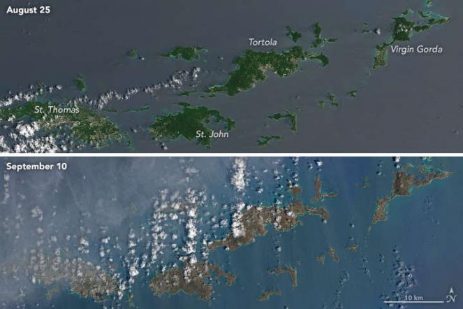 Le Isole Vergini il 25 agosto e il 10 settembre 2017. Joshua Stevens / NASA Earth Observatory / Landsat 8 - OLI