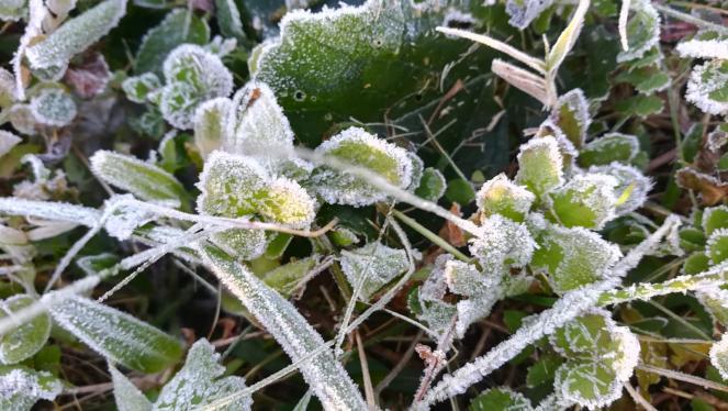 Meteo Italia: temperature minine in calo al Centronord