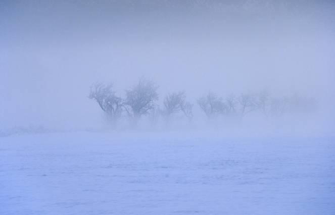 Nebbia gelata