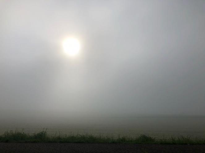 Nebbia in Brianza