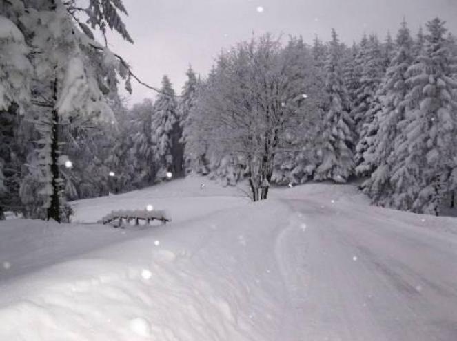 Neve in arrivo, anche abbondante