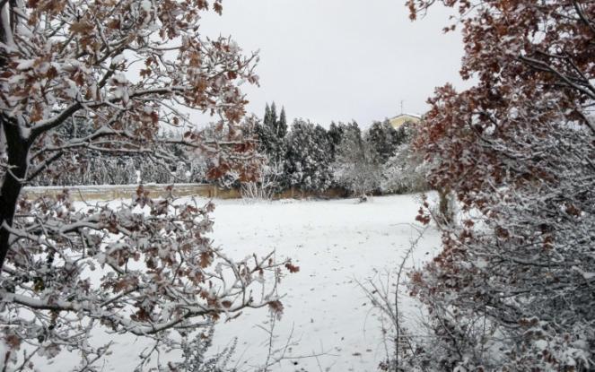 Neve record tra Australia meridionale e Tasmania, non accadeva da oltre 30 anni
