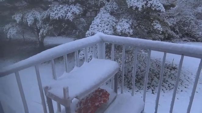 Nevicata tardiva di aprile record in Ohio, non accadeva da 120 anni