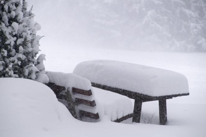 Nevicate in Appennino