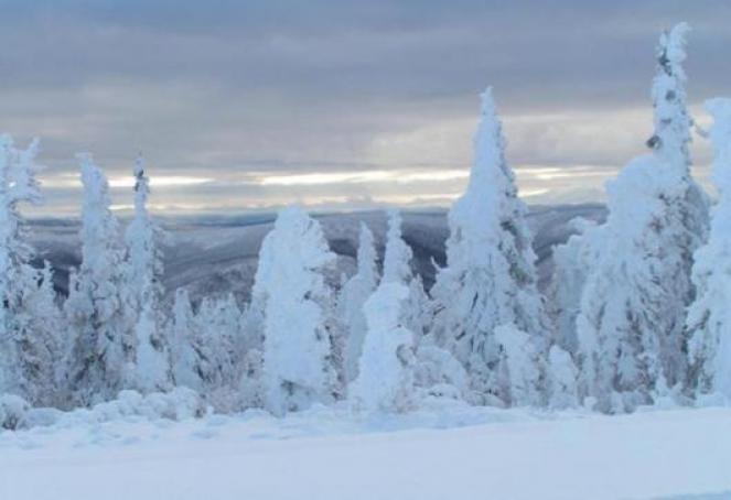 Nuove nevicate in arrivo nei prossimi giorni su Alpi e parte dell'Appennino