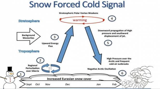 Schema forzatura sul vortice polare secondo Cohen