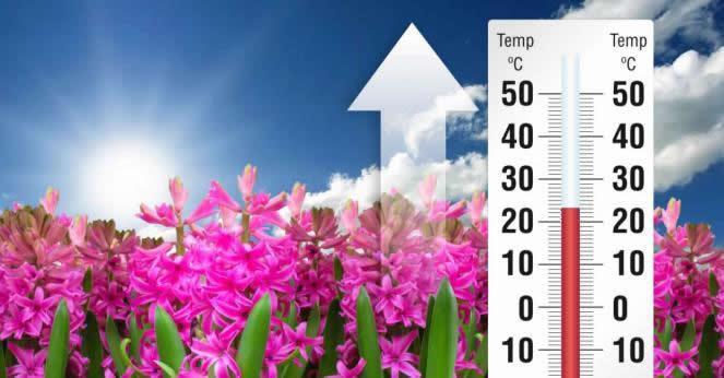 Scoppia la Primavera, massime oltre i 22°C