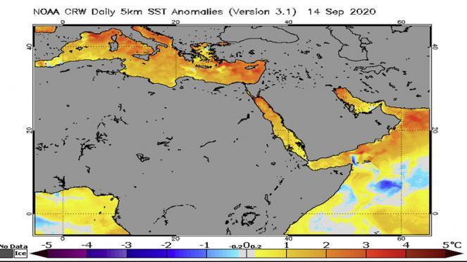 temperature, anomalie acque Mediterraneo