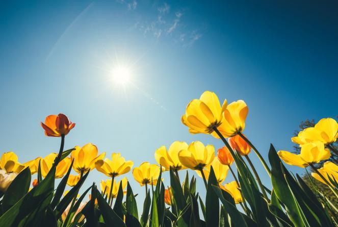 Temperature in aumento, massime come a maggio/giugno
