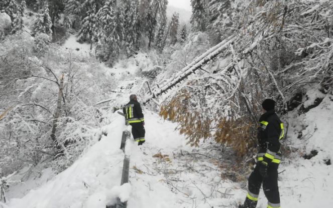 Torna l'emergenza neve in Alto Adige