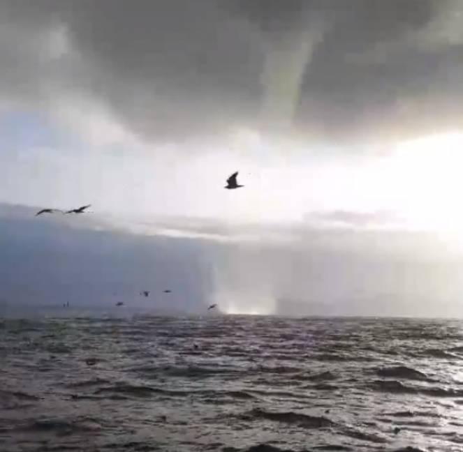 Tromba marina nel Canale di Piombino