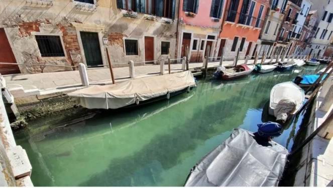 Venezia, Canali mai cosi limpidi (fonte nuovavenezia)