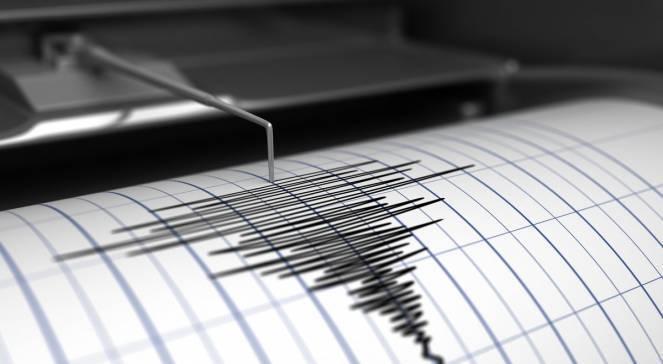Terremoto Nuova Caledonia, scossa di 7.5 gradi: evacuate coste per allarme tsunami