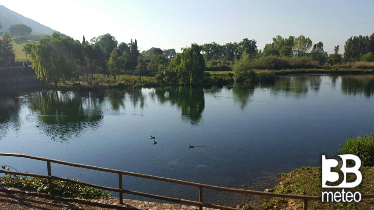 Il lago dei cigni foto gallery « b meteo