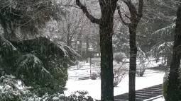 Meteo Torino: neve venerdì, piogge nel weekend