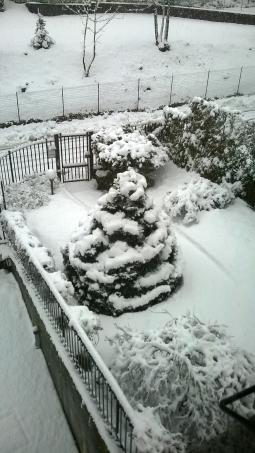neve alle 10