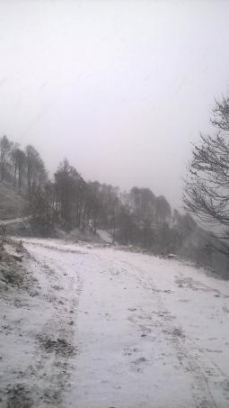 nevicato 23112015