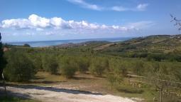 Bagno Mediterraneo San Vincenzo : Bagno mediterraneo san vincenzo livorno bilocali in vendita