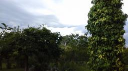 Magie di nubi a Lutrano