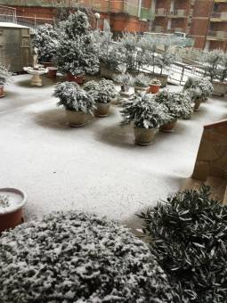 Neve A Chianciano Terme