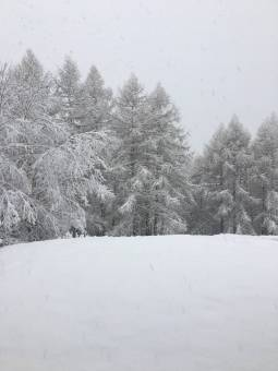 Finalmente tanta neve