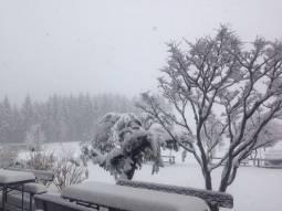 Ultima nevicata a recoaro mille