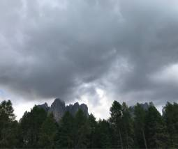 Fotosegnalazione di Vigo ciampedie