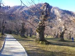 parco invernale