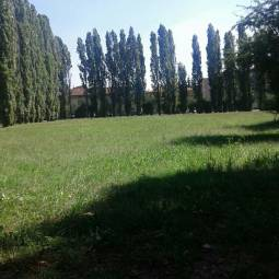 parco arese