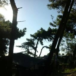 Fotosegnalazione Di Rosolina Mare Foto Gallery 3b Meteo