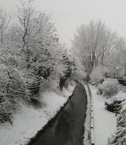 beautiful view in snow