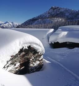 Sabato 130118 dopo la grande nevicata