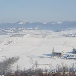 Neve a Montale Celli