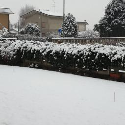 Neve a Lazzate
