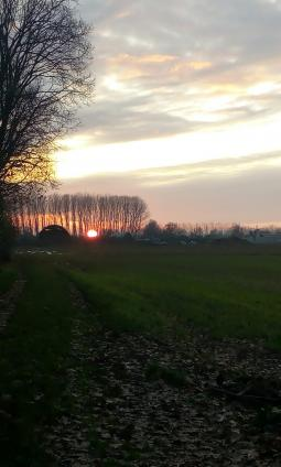 Tramonto invernale