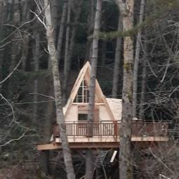 treehousetwo