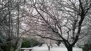 Meteo Frosinone: neve domenica, bel tempo lunedì, variabile martedì